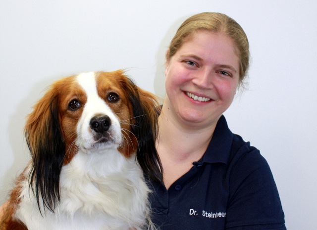 Dr. Katrin Steinheuer